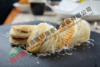 霍林郭勒金丝饼(油煎)
